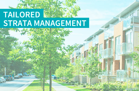 tailored strata management