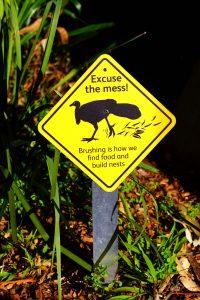 Brush Turkey strata sign